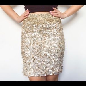 ALSAINTS Skirt- silver , embellished